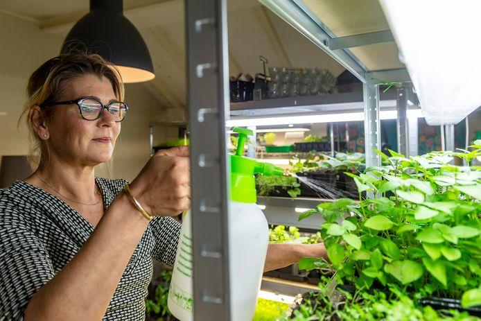 Vicky binnen in één van de kamers van haar huis, die tijdelijk dienst doet als kas voor het opkweken van plantjes.
