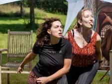 Wikken en wegen bij audities nieuw theaterspektakel