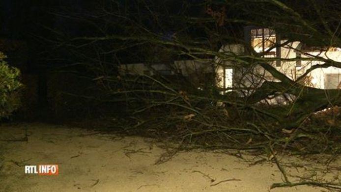 Un arbre est tombé sur une maison à la Hulpe