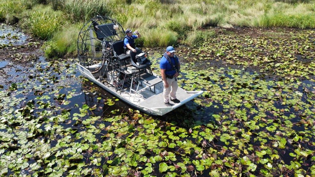 De politie is weken op zoek geweest naar de alligator die de man zou hebben meegenomen.