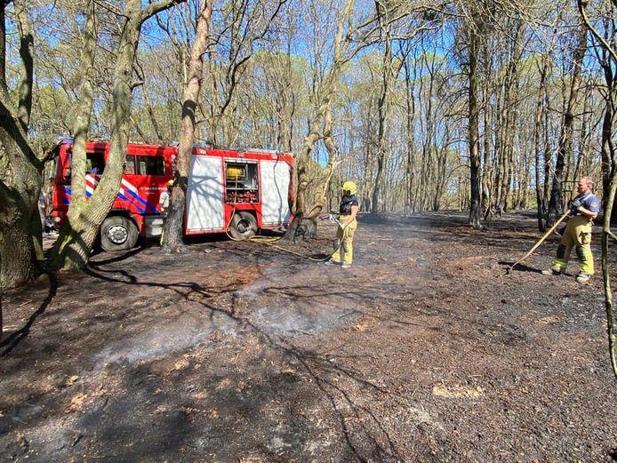 De brandweer van Zelhem in actie bij de natuurbrand in Herkenbosch.