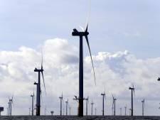 Den Bosch voelt zich (nog) niet gebonden aan groot windmolenpark in de polder: eerst inwoners laten meepraten