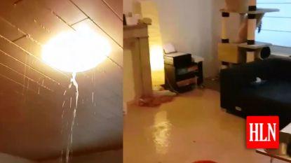 VIDEO. Dak kan water niet houden, huis stroomt onder water in Kortenberg