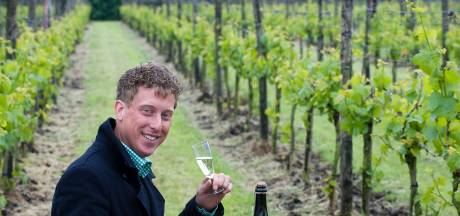 Betuws Wijndomein, een van Burens economische en toeristische paradepaardjes, wil flink groeien