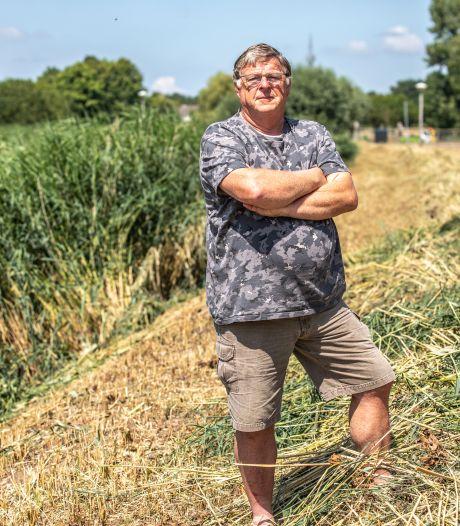 Verbijstering in Zwolle: 'Gemaaid riet nekt kleine karekiet in dit gebied'