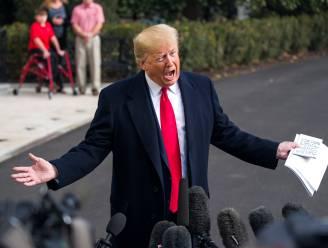 """I want nothing. I want nothing. I want no quid pro quo"": Trumps speech omgetoverd tot punkrockhit"