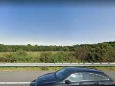 Gemeente Zwolle: maïsveld is niet geschikt voor natuurbegraafplaats