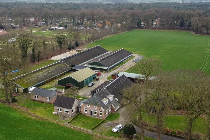 Kippenschuren aan de Koedrift in IJhorst moeten plaats maken voor nieuwbouw van 4 woningen op het erf. In de boerderij komen ook twee sociale huurwoningen.