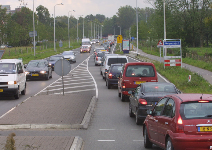 File op de Mansholtlaan in Wageningen.