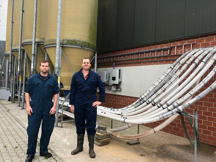 Mark (links) en Wouter Oude Voshaar van de gelijknamige varkenshouderij die door de recente uitspraak van de Raad van State 'op slot' zit.