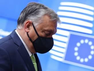 """Harde woorden tijdens """"ongeziene confrontatie"""" met Orban op EU-top: """"Heeft Hongarije nog zijn plaats in de EU?"""""""
