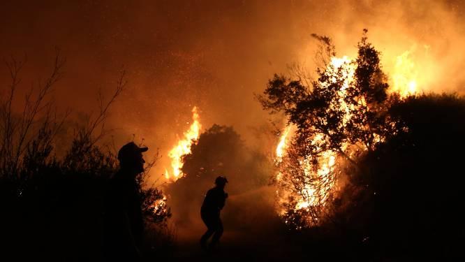 Bosbrand teistert populair Grieks vakantieoord: duizenden op de vlucht