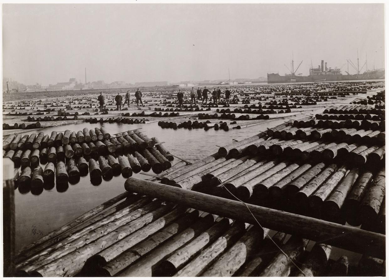 De Houthaven rond 1930. Delphine Bedel gebruikt de foto in haar bijdrage aan Van hout en de dingen die voorbijgaan.