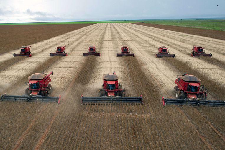 Soja-oogst nabij de stad Cuiaba in de Braziliaanse deelstaat Mato Grosso. Beeld AFP