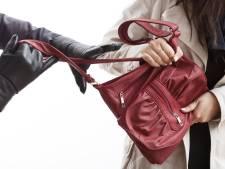 Vrouw (62) wandelt met kleinkinderen in Tilburg en wordt beroofd van handtas