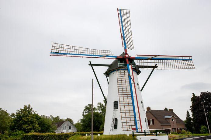Korenmolen 't Nupke in Geldrop in volle glorie. De vrijwillige molenaars wonnen een belangrijke veldslag in de oorlog tegen alles wat de molenwind in de weg staat.