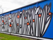 Indrukwekkend: Langerbrugge opgefleurd met muurkunstwerk van 16 meter lang
