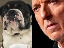 Wesley in spanning om Meiland-hond Bommel op te zetten: 'Er kijken 2 miljoen mensen mee'