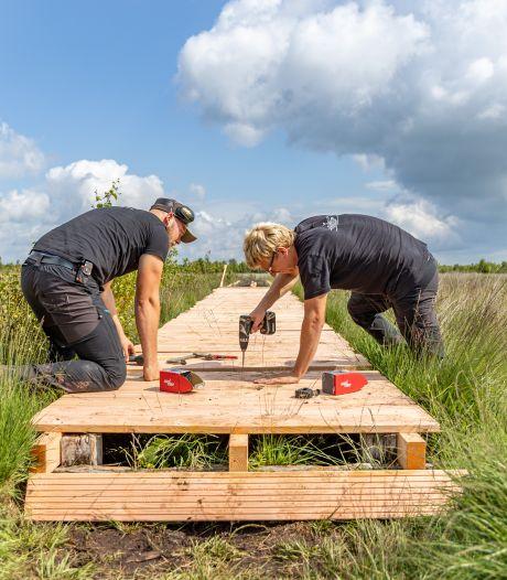 3500 plankjes vastschroeven voor herstel uniek wandelpad in natuurgebied Haaksbergen