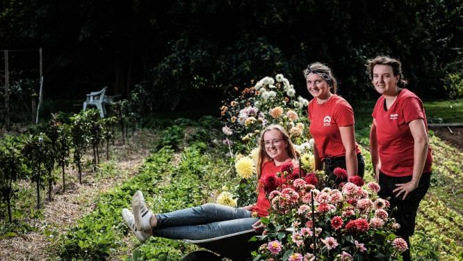 Rijnsburgse jongeren helpen in Hummelo in plaats van Rwanda: 'Geen moment spijt van'