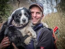 Schaapsherder Thom geniet van lente maar betreurt loslopende honden: 'Ze beseffen niet wat ze aanrichten'