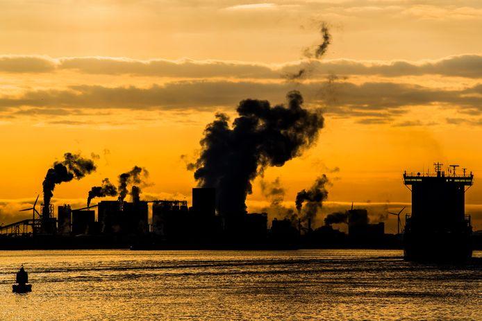 De industrie en het verkeer spelen volgens het Mesdagfonds een veel grotere rol bij de neerslag van stikstof in Natura 2000-gebieden.