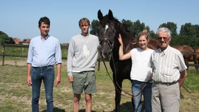 """Familie Gheeraert fokte paard dat geselecteerd is voor Olympische Spelen: """"Zijn springtechniek en doorzettingsvermogen typeren hem"""""""