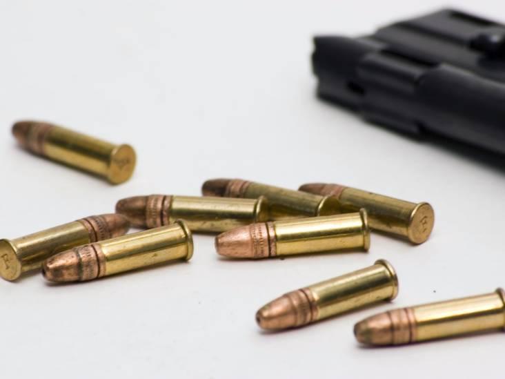 Kogelgaten in loods en verkeersborden Werkendam, politie zoekt getuigen