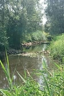 Na droge winter nu ook droge zomer, waterschap waarschuwt voor gevolgen