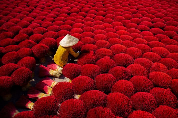 'Red bundles of Bamboo sticks'. Winnaar Vincent van Gogh Photo Award.