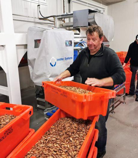 Breskens treurt: laatste dag voor garnalen in de vismijn