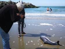 PvdD: 'Snel verbod op staand want vissen'