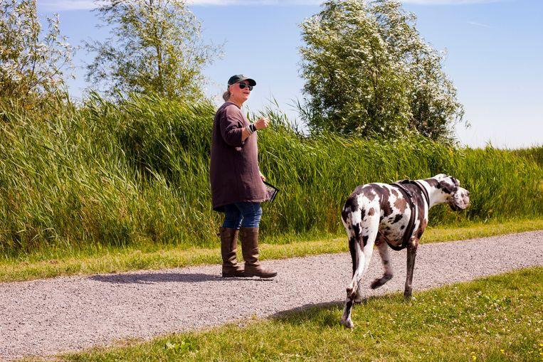 Trainer Annemiek van Daalen en haar Duitse dog Floyd. Beeld Renate Beense
