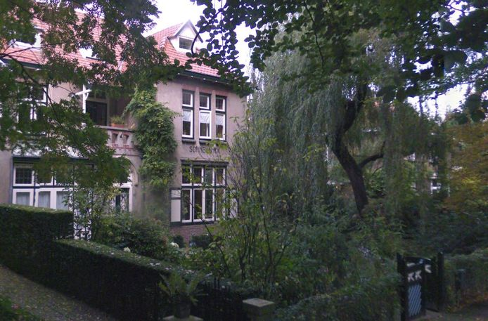 De bewoners van Sonnevanck aan de George Perklaan beweren dat door voorbijrazende treinen hun villa scheuren is gaan vertonen.