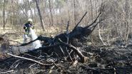 Acht korpsen bestrijden bosbrand in Postel