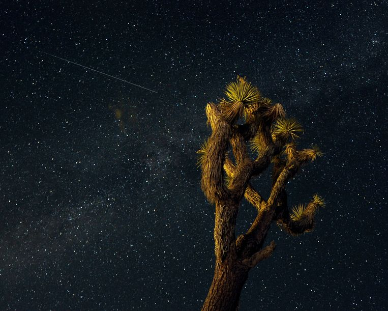 epa03821997 A Perseid streaks across the sky over the Mojave Desert in Landers, California, USA, 12 August 2013. The Perseid meteor shower occurs every year in August when the Earth passes through debris and dust of the Swift-Tuttle comet.  EPA/PAUL BUCK Beeld EPA