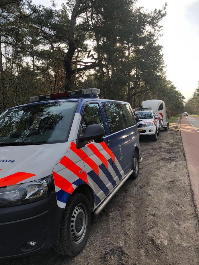 Bij een handhavingsactie op de Vrachelse Heide in Oosterhout zijn 11 bekeuringen uitgedeeld aan hondenbezitters die hun hond niet hadden aangelijnd.