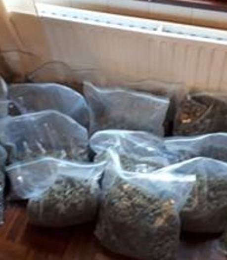 Politie ontdekt wapens, geld en hennep in huizen Sint-Maartensdijk en Bergen op Zoom