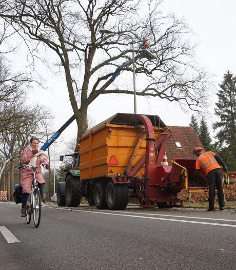 N348 week afgesloten voor verkeer door snoeiwerk