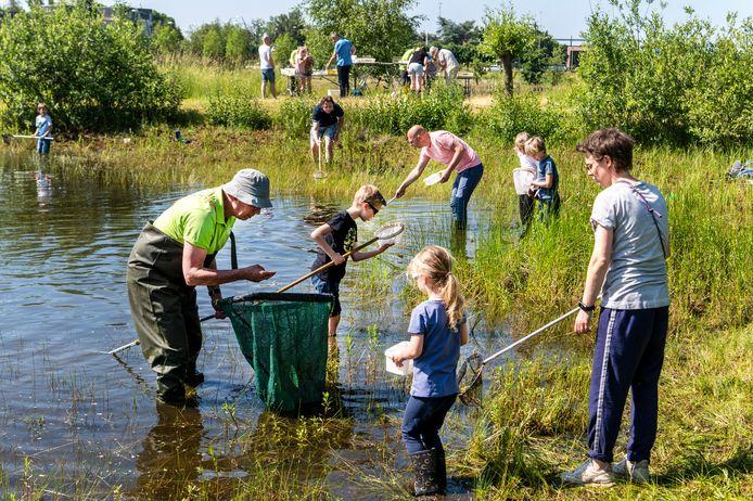 Aan de poel in het park aan de Veghelsedijk in Uden konden kinderen onder begeleiding van IVN-gidsen waterdieren uit het water scheppen en die bestuderen.