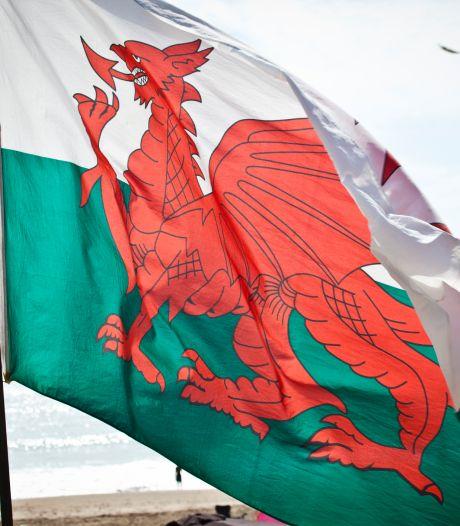 """Une pétition officielle réclame """"un pénis"""" pour le dragon sur le drapeau du Pays de Galles"""