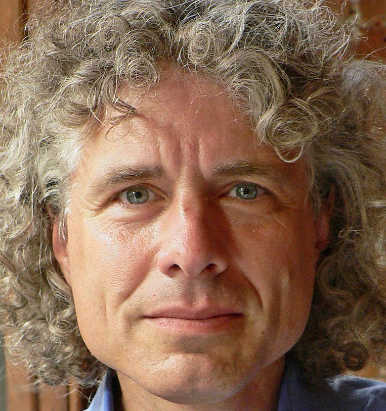 Steven Pinker Beeld RV