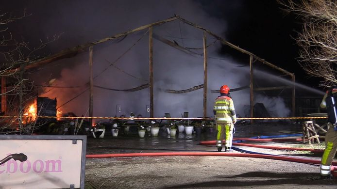 Videostill 53 paarden gered van de dood bij grote brand in Lelystad