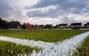 Kunstgrasveld vv Zwaluwe