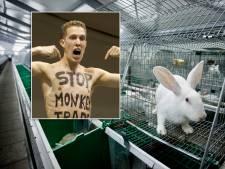 Vegan Streaker dringt 's nachts konijnenstal binnen in de Achterhoek: 'Hij probeert ons kapot te maken'