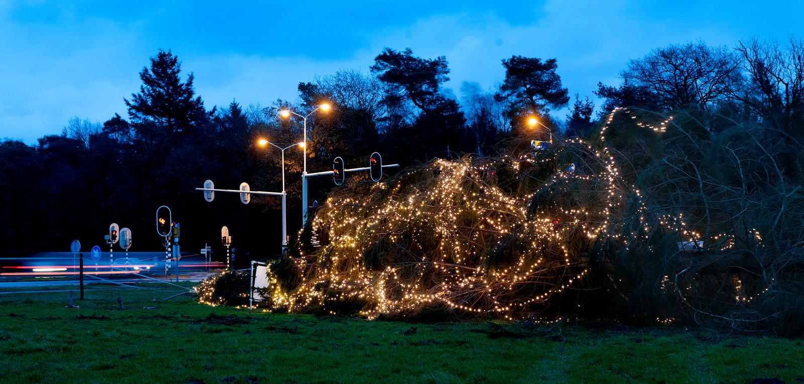 Een door storm omgewaaide kerstboom een paar jaar geleden. Het KNMI waarschuwt dat het vanavond ook heel hard gaat waaien.