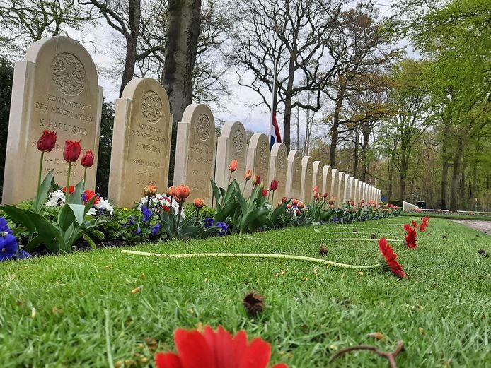Eerder op de dag waren al gerbera's bij de meeste van de 850 graven op het Ereveld gelegd.
