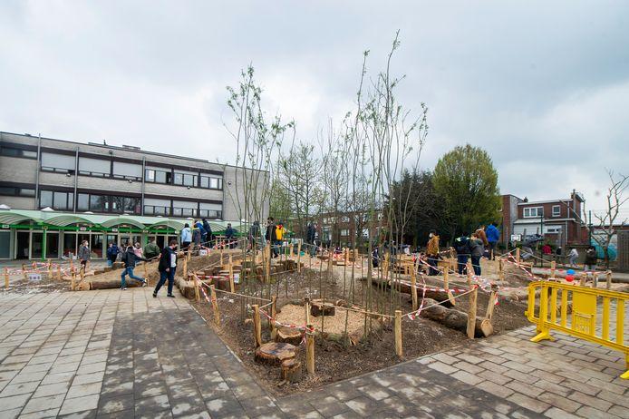 De nieuwe speelplaats van Het Laerhof in Merksem.