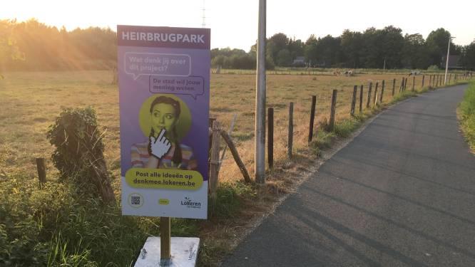 Slechts 220 Lokeraars geverifieerd op Denk Mee: Thienpondt (sp.a) wil drempel naar participatieplatform verlagen