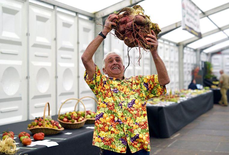 Op de Harrogate Flower Show poseert Ian Neale met zijn winnende suikerbiet. Hij weegt maar liefst 14,14 kilo. Beeld AFP